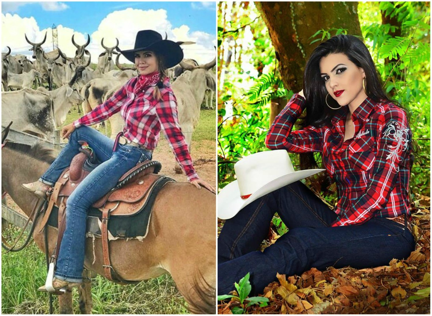 @michellydc / camisa cowboy store